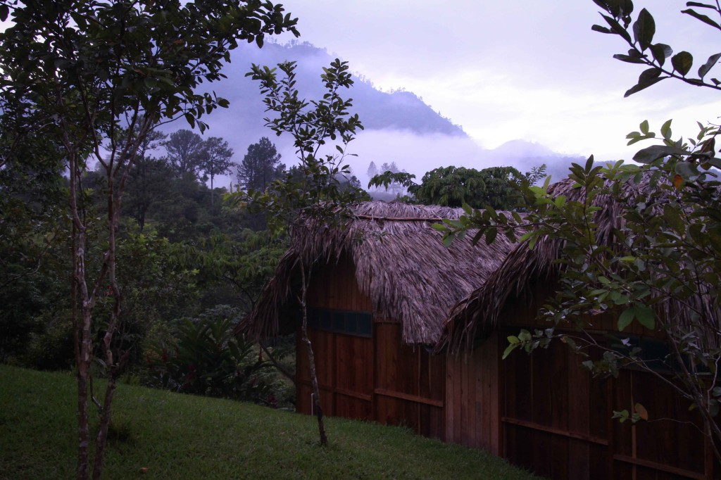 The bungalows at Hostel Oasis in Lanquin.
